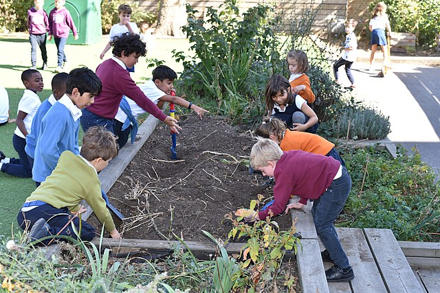 640px-Children_at_the_Lycée_International_de_Londres_learning_about_gardening