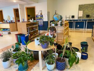 Having plants inside has been linked to improved concentration as well as a reduction in stress! It also increases productivity and reduced mental fatigue, all of which can be beneficial in the classroom! Thanks to Ollie's love for plants we can see these claims in action!! 🌱💚 #plants #montikids