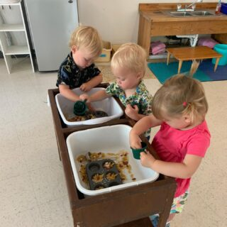Yay for sensory bins! These allow children to explore, discover, imagine, create, and learn while engaging their senses all while having fun! #msd #montikids