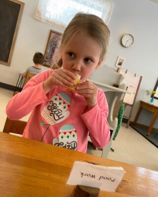 """Food work"" is a favorite of children in the classroom. A child is developing fine motor skills while following a series of steps and enjoying the reward of their hard work by enjoying the snack. #duluth #school #learn #montessoriactivities"